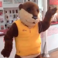 Ollie the Otter in happier times.