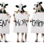My Pleasure — Truett & Dan Cathy Do Chicken Right…