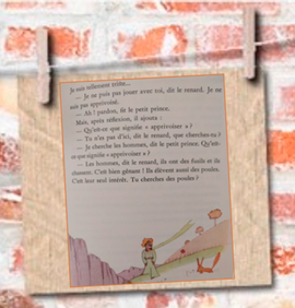 Taming Little Prince book French